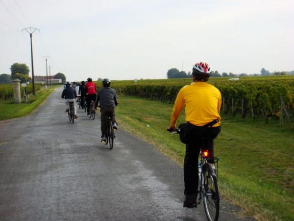 road-cycling-beaujolais-vineyards